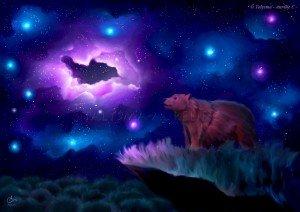 Sous les étoiles dans Animaux ours-300x212